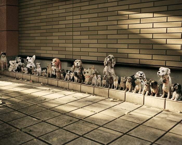 Dog Statues, Takao, 2009