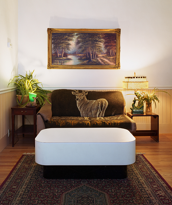 Untitled Interior (deer couch)