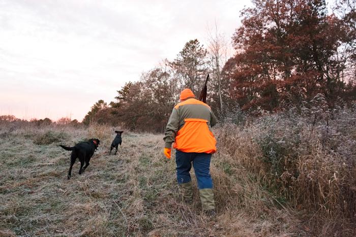 Dennis, Pheasant Hunting