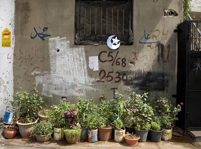 Flower Pots, Lebanon