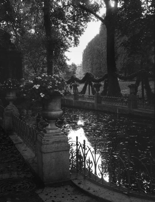 Medicis Fountain 2, 2010