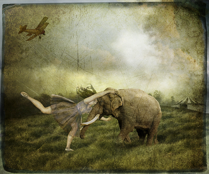 "Fran Forman ""Circus Escape"""