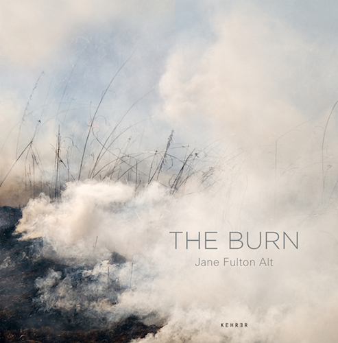 "Leo Hsu reviews ""The Burn"" by Jane Fulton Alt"