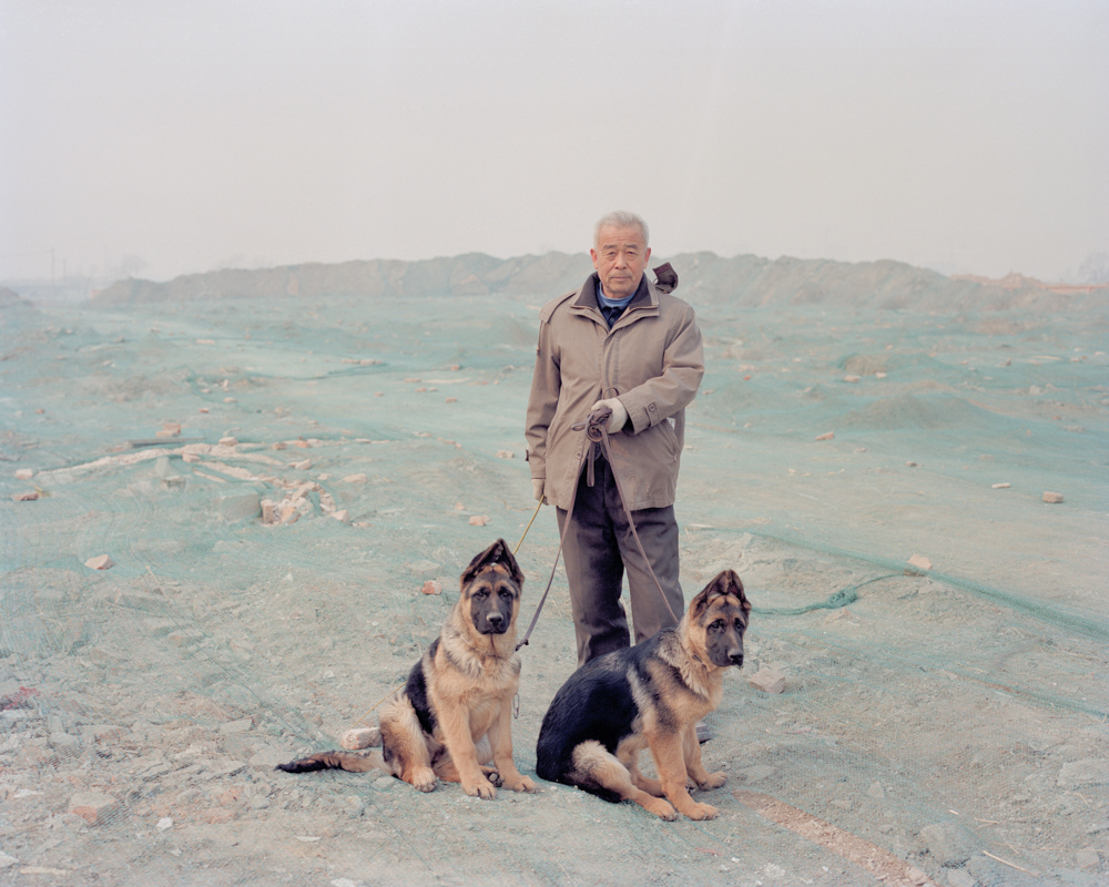 Man with His Shepherd Dogs