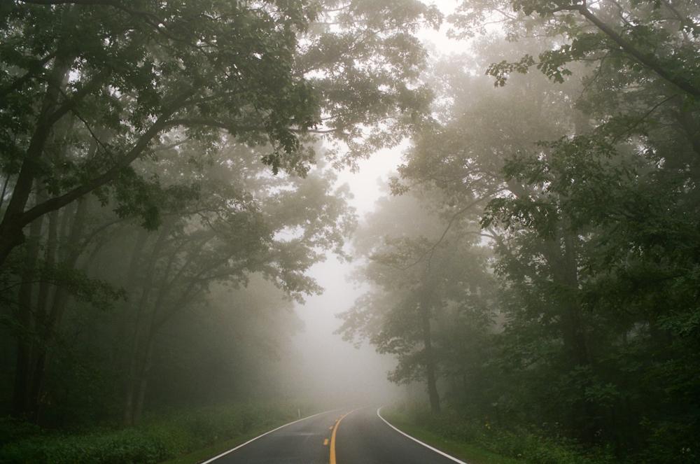 Skyline Drive, Shenandoah