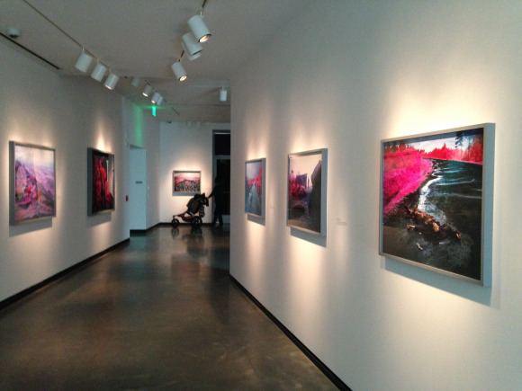 Richard Mosse's Installation at the Portland Art Museum