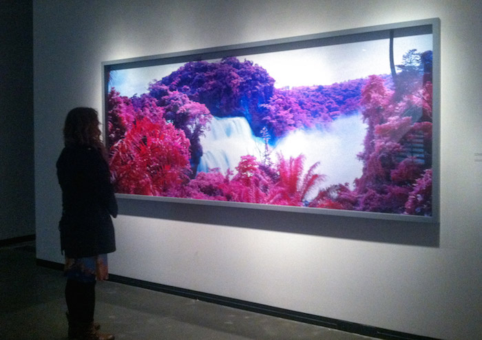 Nick Shepard responds to David Ondrik's review of Richard Mosse's The Enclave