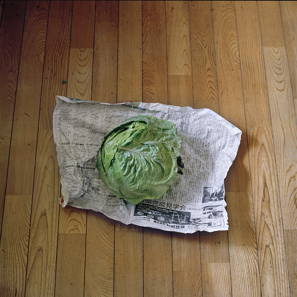 Home grown-cabbage