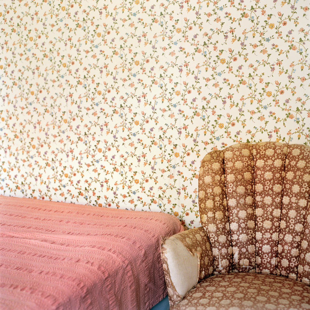 Floral patterns (Woods Hole, MA) 2013