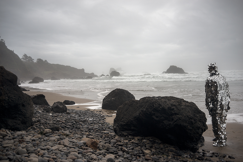 Oscillator in Ecola State Park (2014)