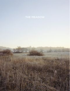 Meadow copy.jpg