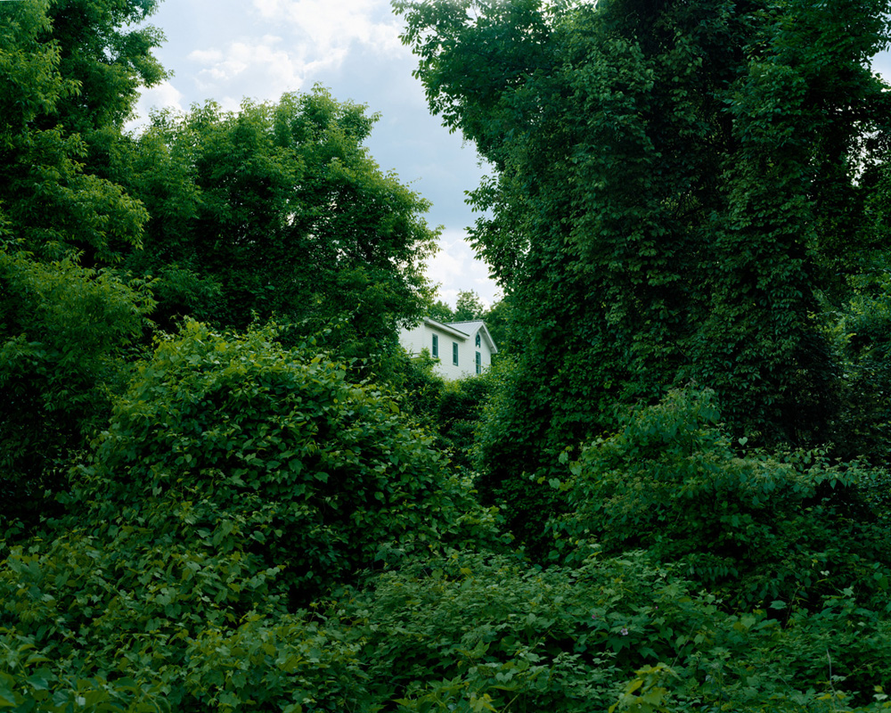 A House Within the Forest Trees, Ausable Chasm, New York