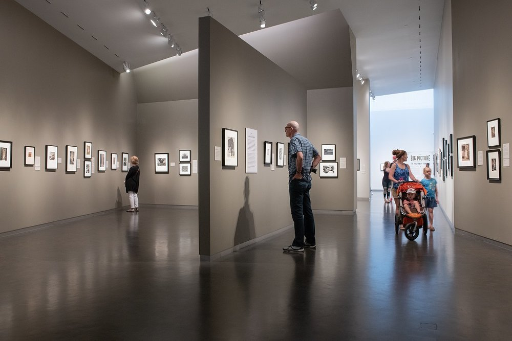 Installation View,  The Big Picture . Courtesy of The Nelson-Atkins Museum of Art, Kansas City, Missouri