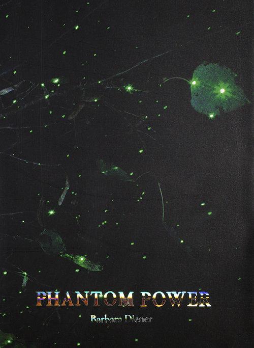 Leo Hsu reviews  Phantom Power  by Barbara Diener