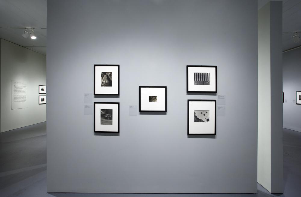 Jewish Museum Photo League Gallery Layout