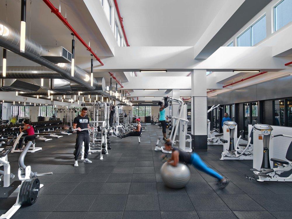 Equinox Williamsburg Weight Area