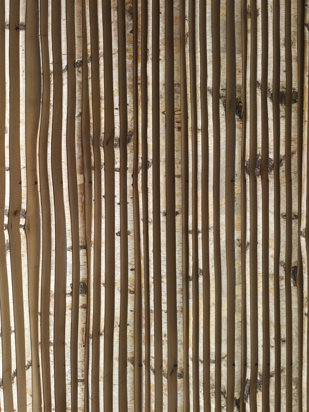 Bohemian Apartment Bamboo Panel