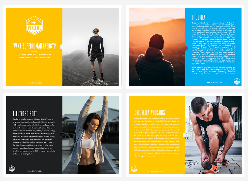 Workfuel PDF 1.jpg