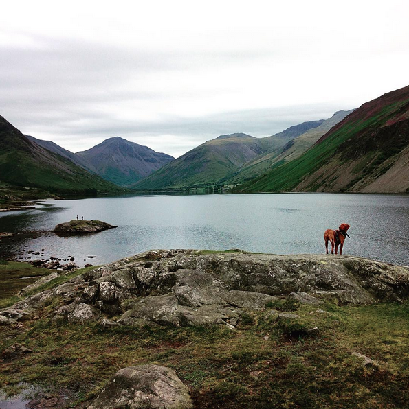 travel lake district wast water vizsla blogger 1