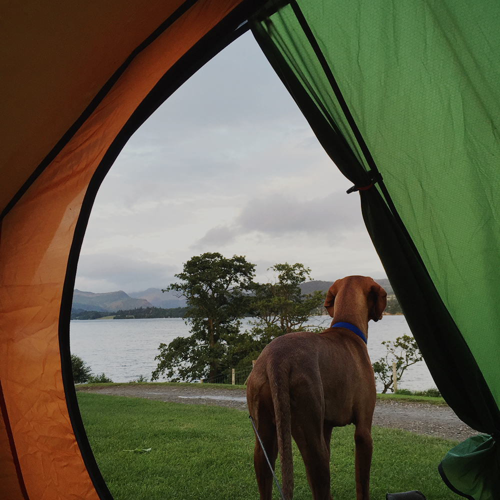 Ullswater Waterside Farm Camping Travel Blogger 14