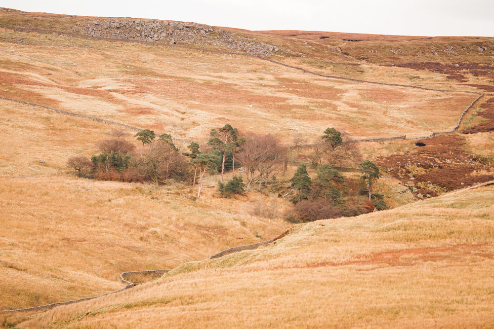 Trough of Bowland uk breaks 10