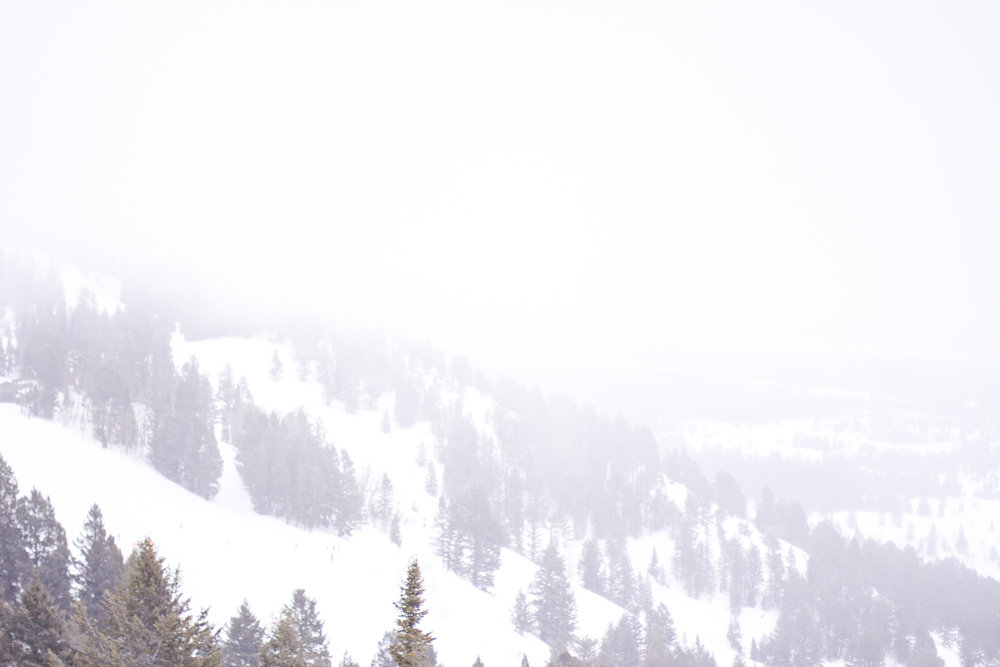 Jackson Hole Mountain and Ski resort blogger travel whiteout