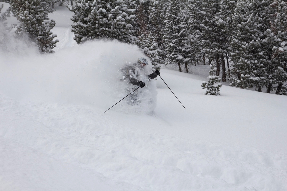 Let us guide you to Montana's blower powder
