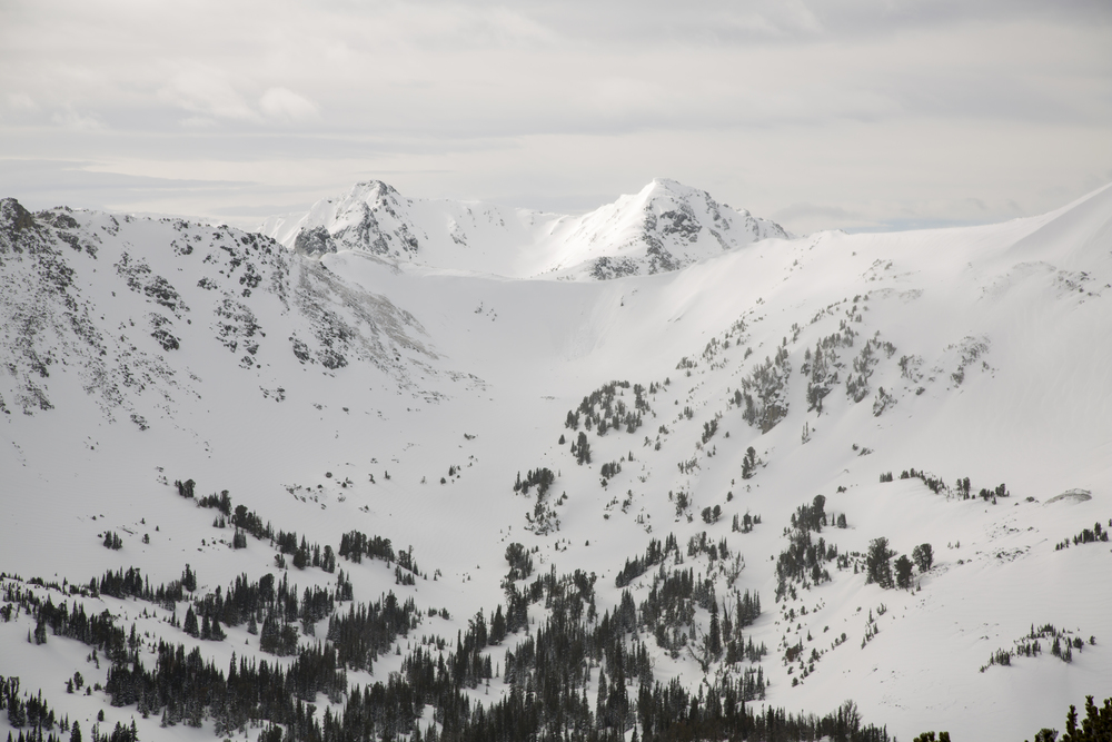 Expansive backcountry powder bowls.