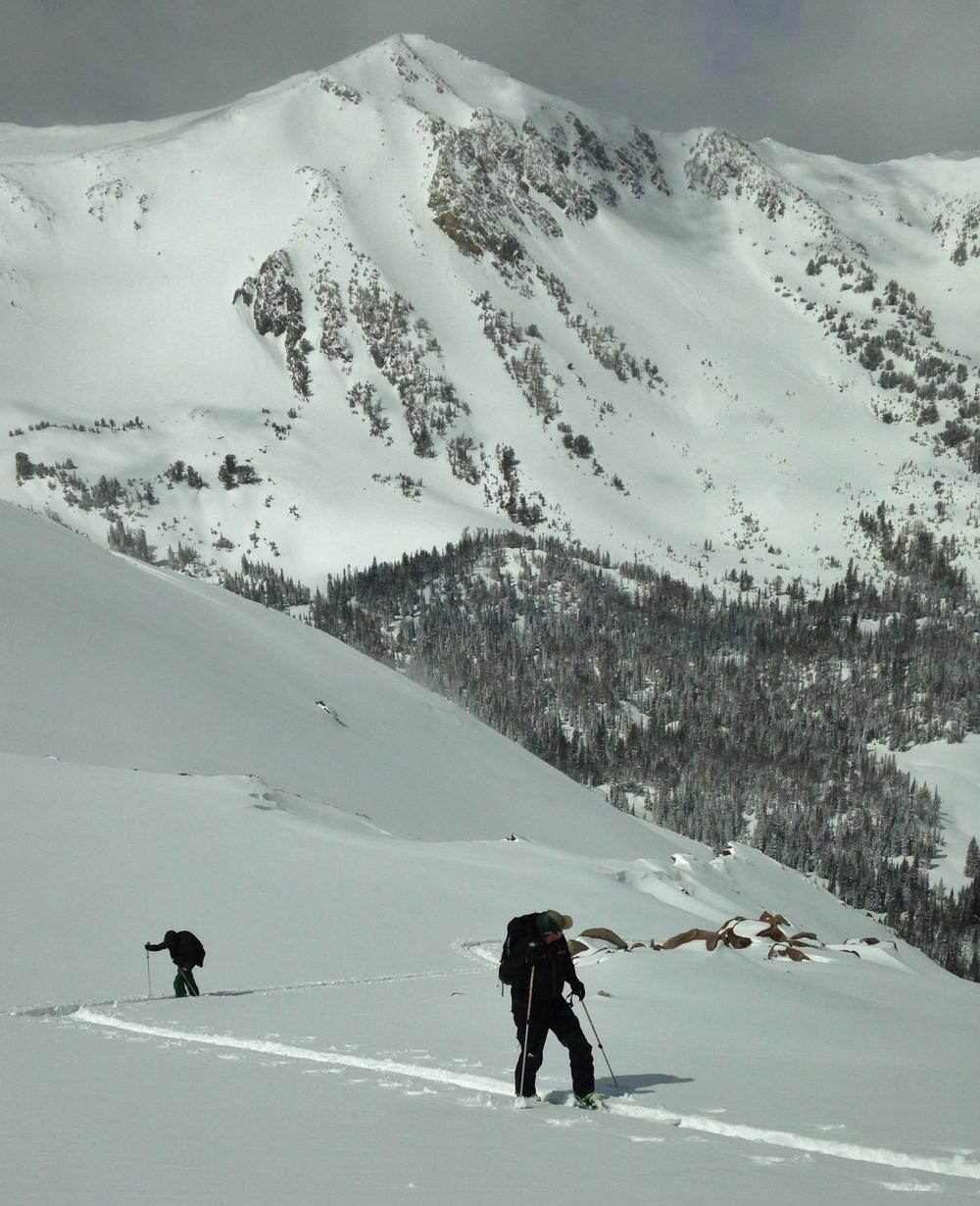 Scenic alpine ski touring.
