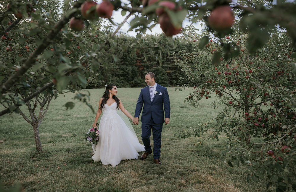 Bride and groom in an apple orchard at The Barn at Flanagan Farm
