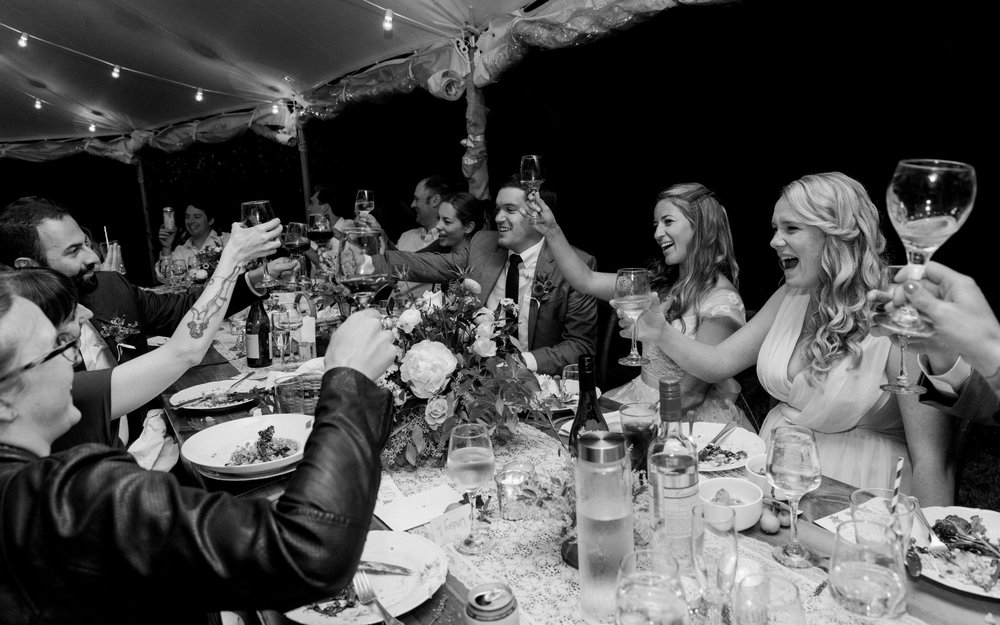 Bridal party cheers at wedding reception