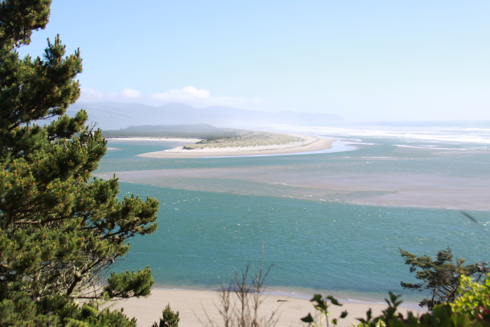 Oregon Coast, Photo by  Denise Faddis