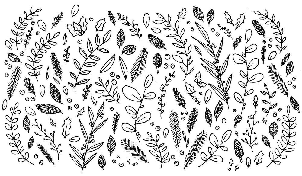 Winter botanicals - ink on paper