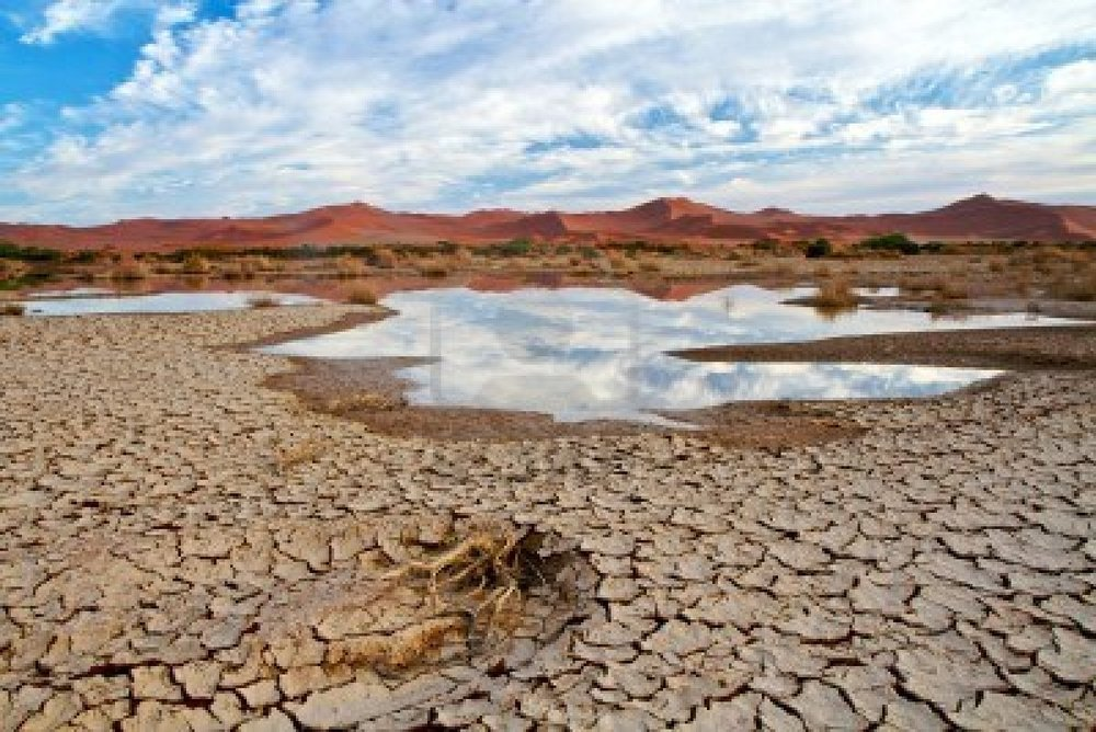 11138520-desert-scene-with-water-and-cracked-earth-in-namibia-africca.jpg