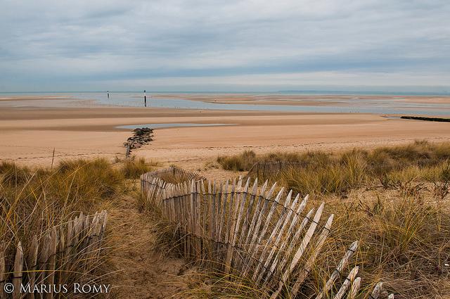 Les dunes de Cabourg.jpg