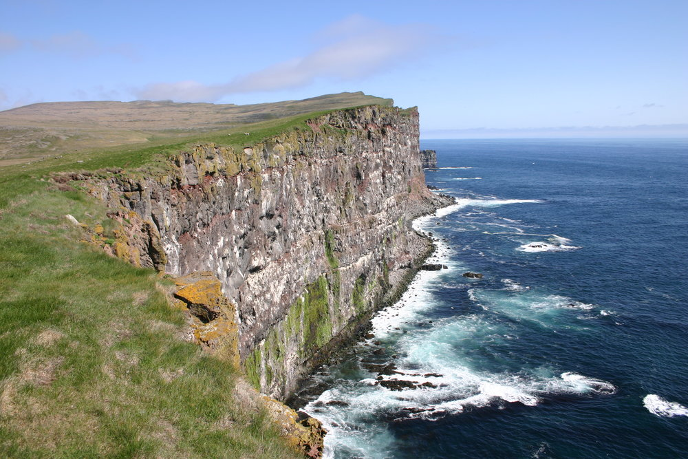 Iceland2008-Latrabjarg.cliff.JPG