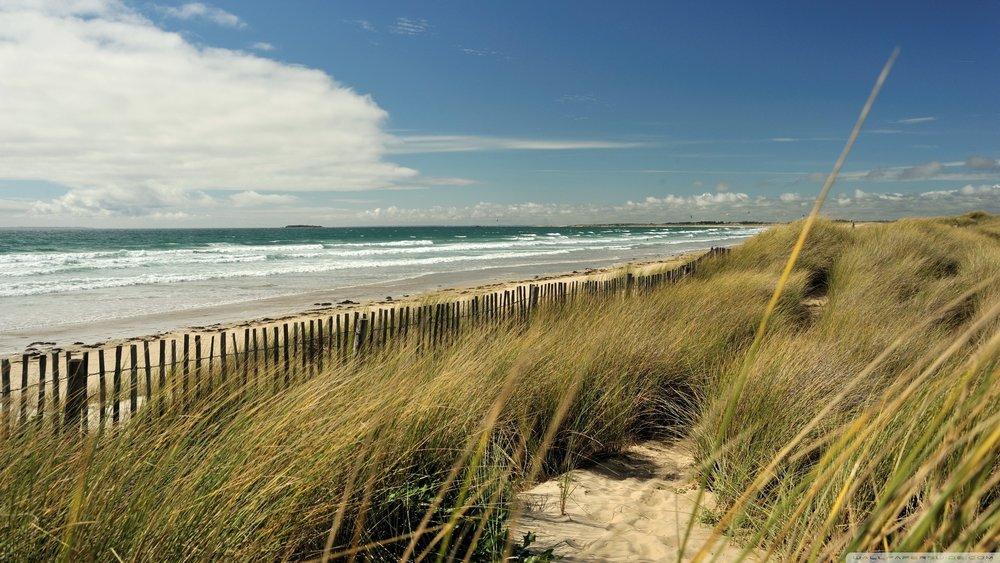 131215The-brown-grass-beach-wallpaper.jpg