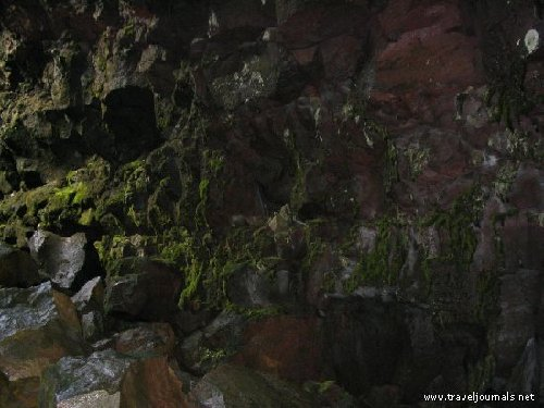 17048-inside-the-cavemoss-growing-on-the-rocks-highlands-iceland.jpg