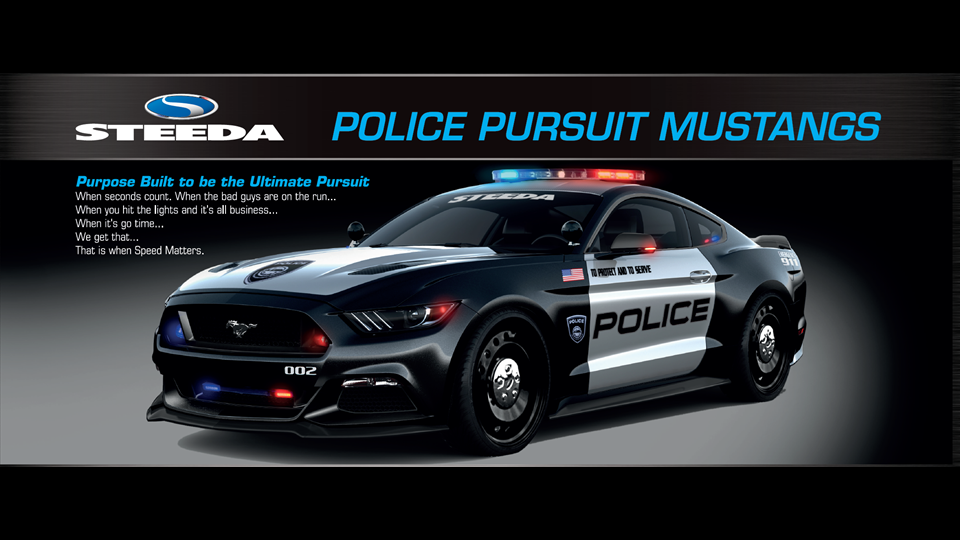 Police Pursuit Mustang