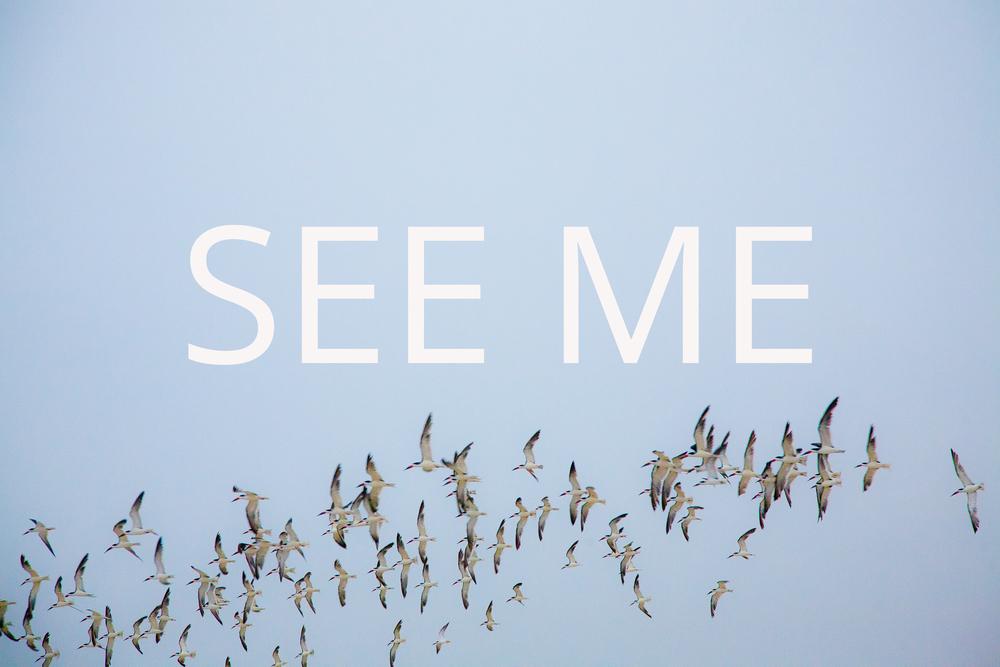 Sarah Scheidler-SEE ME middle.jpg