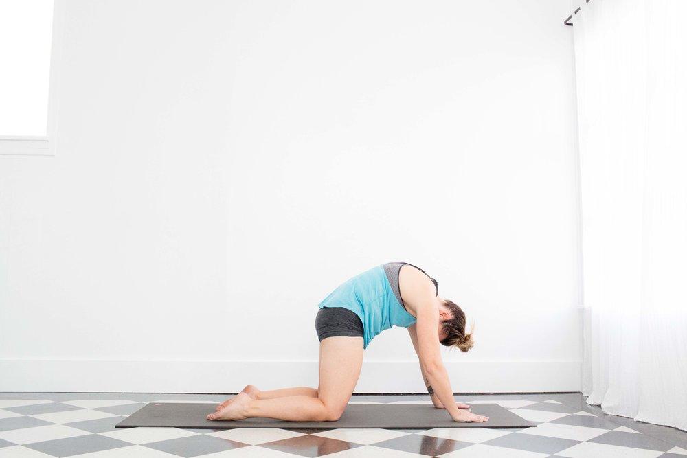 0218 Yoga-0333.jpg