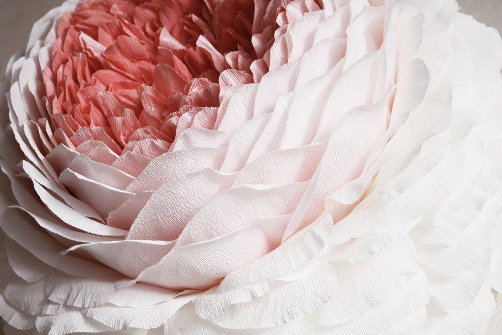 Tiffanie turner papel sf i love roses mightylinksfo