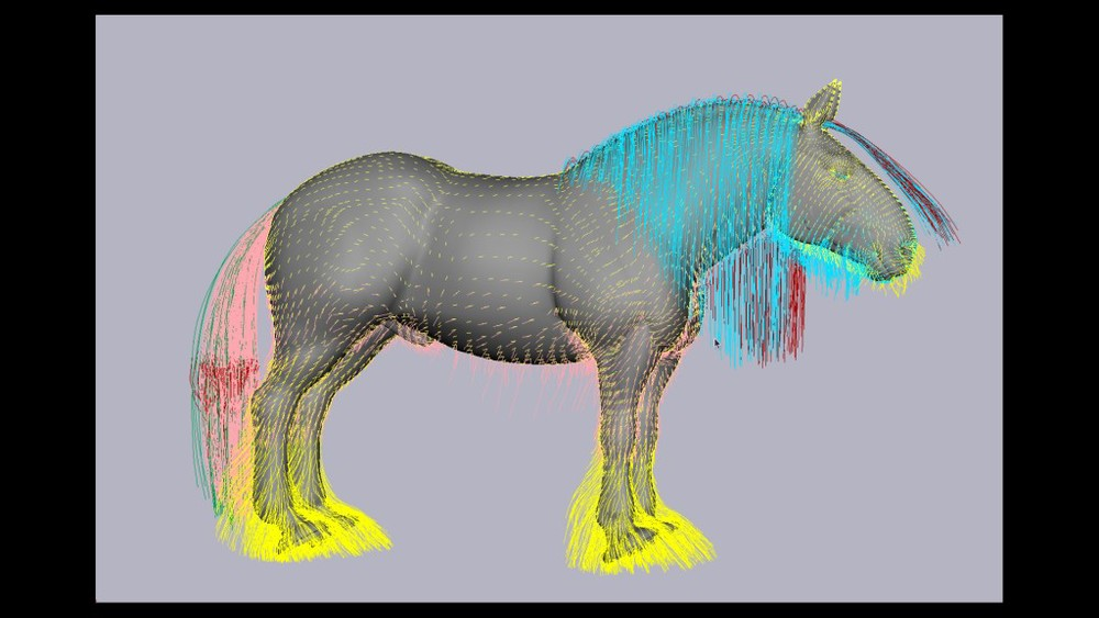 "An image illustrating how simulation artists place ""key"" hairs on the body of an animal, such as Angus, to determine the direction and length of hair, based on the character's art design. Image by Disney/Pixar. All rights reserved."