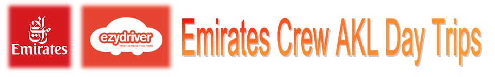 Emirates Ezy Header.JPG