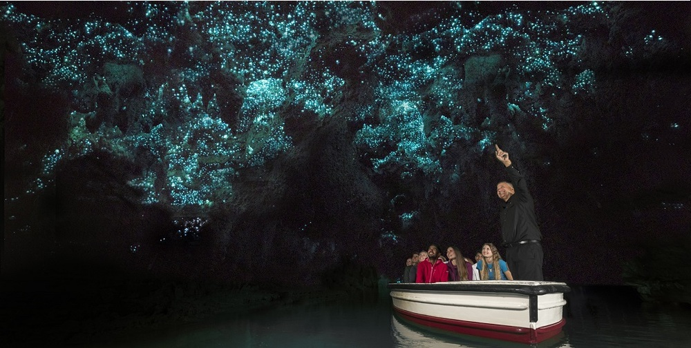 Waitomo Caves -