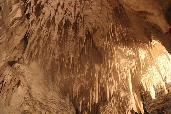 Waitomo Aranui Cave