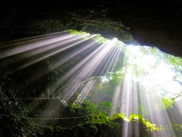 Waitomo Cave.jpg
