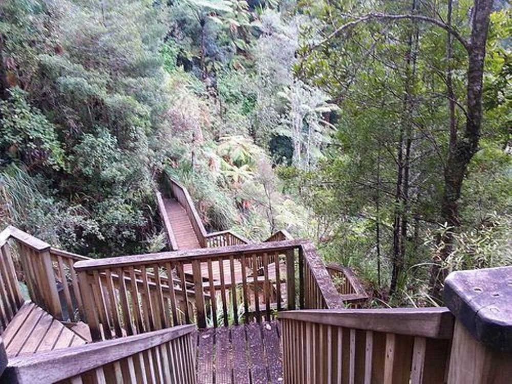 Fairy Falls Track1.jpg