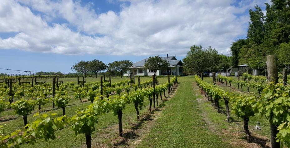 Kerr Farm Wines