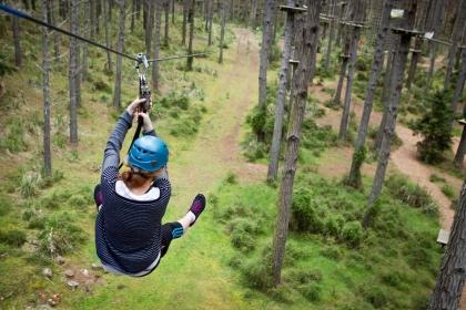 Tree Adventures Zip Line Park